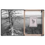 Dead tree, Jenny Lake, Grand Teton, Wyoming Case For iPad