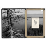 Dead tree, Jenny Lake, Grand Teton, Wyoming iPad Mini Covers