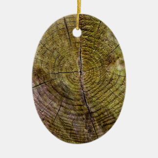 Dead tree rings ceramic ornament