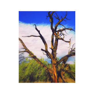 Dead Tree\ Stretched Canvas Prints