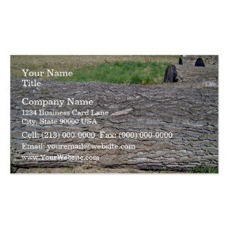 Dead Tree Trunk lying on ground Business Card