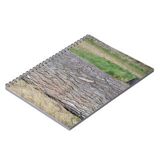 Dead Tree Trunk lying on ground Notebook