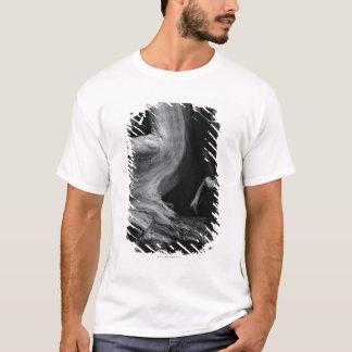 Dead tree trunk T-Shirt