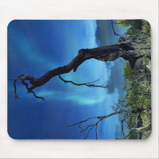 Dead Tree With Blue Sky Mouse Pad