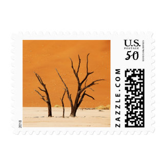 dead trees in desert landscape of Namib Postage