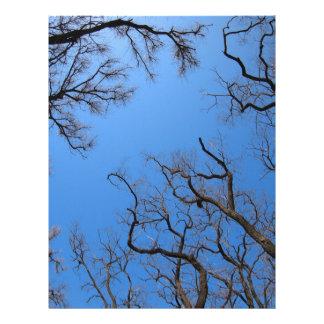 Dead trees in the environmental catastrophe letterhead