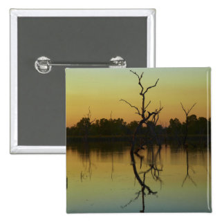 Dead trees reflected in Lily Creek Lagoon, dawn Button