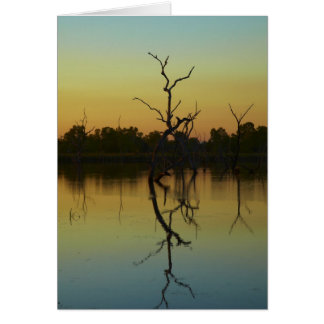 Dead trees reflected in Lily Creek Lagoon, dawn Greeting Card