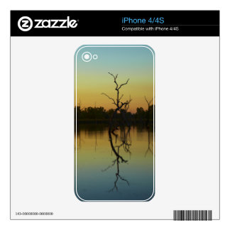 Dead trees reflected in Lily Creek Lagoon, dawn Decal For iPhone 4