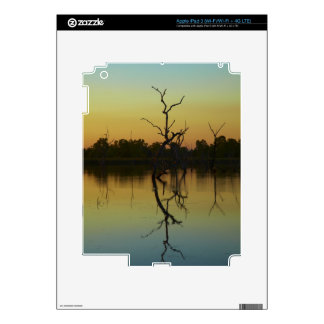 Dead trees reflected in Lily Creek Lagoon, dawn Decals For iPad 3