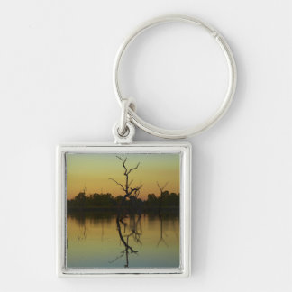 Dead trees reflected in Lily Creek Lagoon, dawn Key Chain