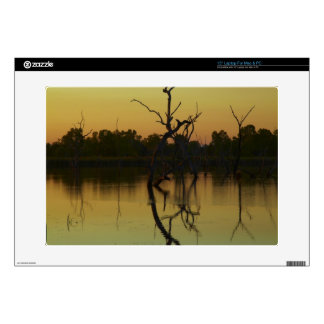 Dead trees reflected in Lily Creek Lagoon, dawn Laptop Decal