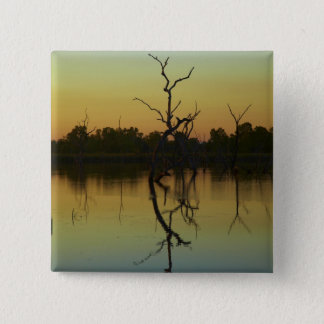 Dead trees reflected in Lily Creek Lagoon, dawn Pinback Button