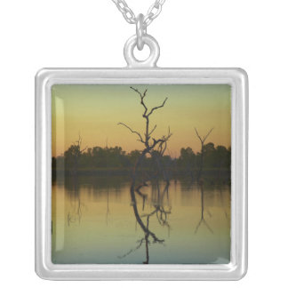 Dead trees reflected in Lily Creek Lagoon, dawn Silver Plated Necklace
