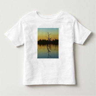 Dead trees reflected in Lily Creek Lagoon, dawn Toddler T-shirt