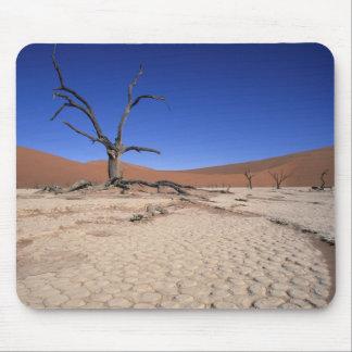 Dead Vlei, Sossusvlei, Namib-Naukluft National Mouse Pad