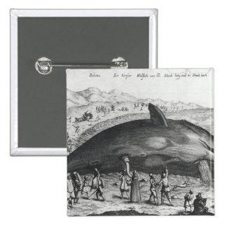 Dead whale button