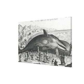 Dead whale canvas print