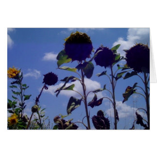 Deadheads Stationery Note Card
