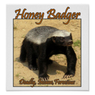 Deadly, Insane, Ferocious Honey Badger Print