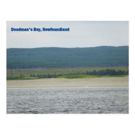 Deadman's Bay, Newfoundland Postcard
