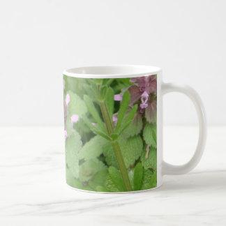 Deadnettle púrpura/rojo taza