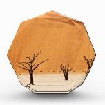 Deadvlei con MUERTOS de árboles, desierto de Namib