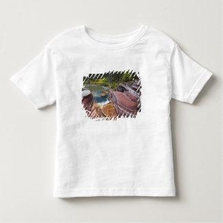 Deadwood Falls on Reynolds Creek in autumn in Toddler T-shirt