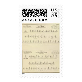 Deaf and Mutism, Statistical US Lithograph Postage Stamp