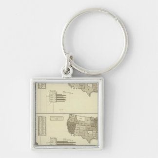 Deaf, Paupers, Prisoners statistical map Keychains