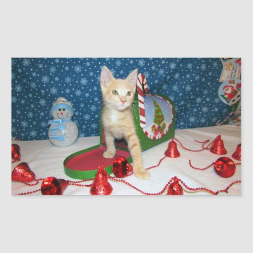 Deaglan Christmas Wishes Rectangular Stickers