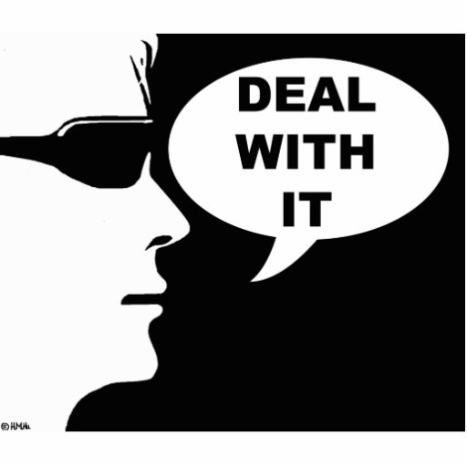 Deal with it photo sculpture magnet
