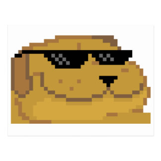 Deal With it Smugdog Postcard