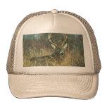 Dear / Buck / White-tailed Deer Hat