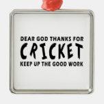 Dear God Thanks For Cricket Ornament