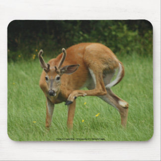 Dear Itch Mouse Pad