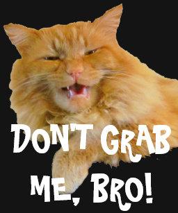 Trump Cats T Shirts T Shirt Design Printing Zazzle