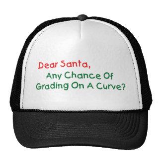 Dear Santa Any Chance Of Grading On A Curve Hat