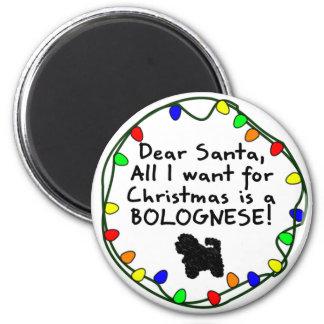 Dear Santa Bolognese Fridge Magnets