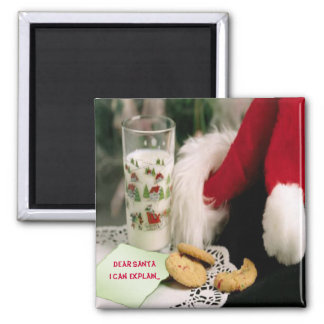 Dear Santa christmas fridge magnet