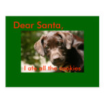 Dear Santa,, I ate all the cookies Post Cards