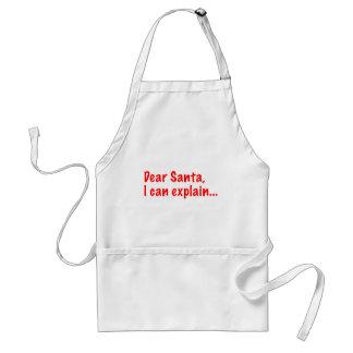 Dear Santa, I can explain... Aprons