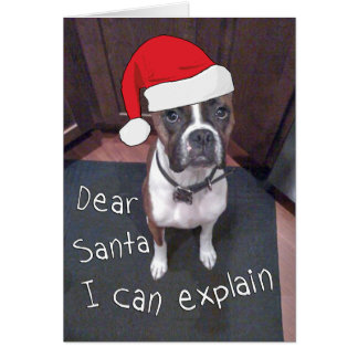 Dear Santa I Can Explain Card