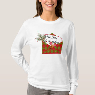 Dear Santa...I Can Explain T-Shirt