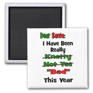 Dear Santa Fridge Magnets