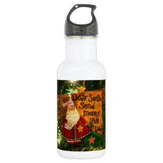 Dear Santa Send Money Stainless Steel Water Bottle