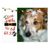Dear Santa, the cat did it - Dog-Lover Postcard