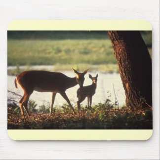 Dear / White-tailed Deer and Fawn Mouse Pads