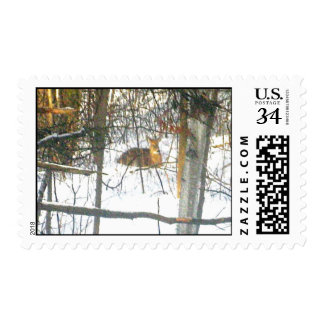 Dearie Deer Actual Stamps* Postage Stamps