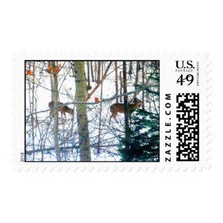 Dearie Deer Actual Stamps* Postage